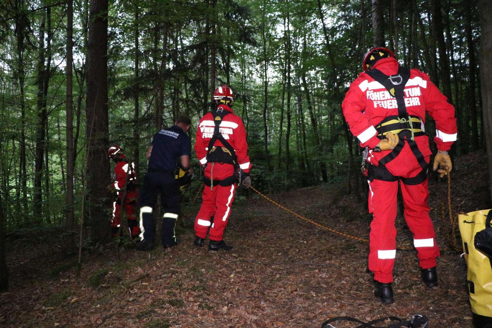 Kletterausrüstung Baum : Tierrettung: katze vom baum gerettet ff gallneukirchen